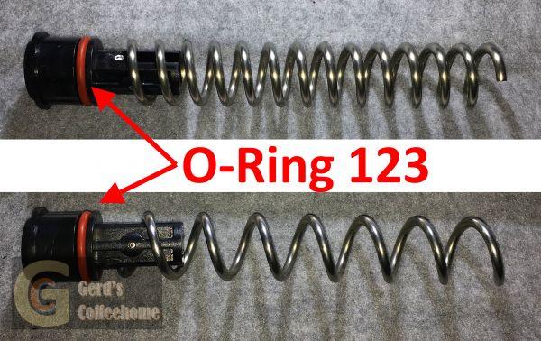 O-Ring 123